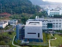 Ternyata Sejak 2014 Amerika Danai Penelitian Virus Corona di Wuhan, Begini Kronologisnya